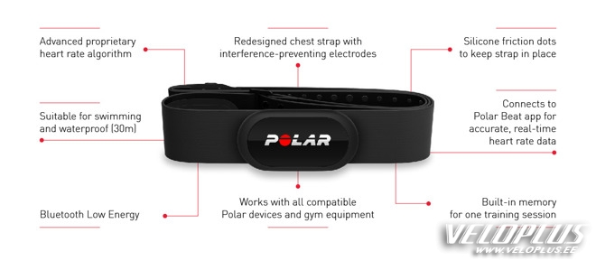 9a4ce7d2321 Pulsivöö POLAR H10 Bluetooth Smart M-XXL must | Veloplus